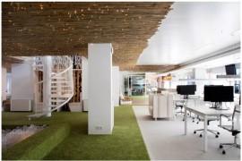 办公室设计中如何利用藤状材质?